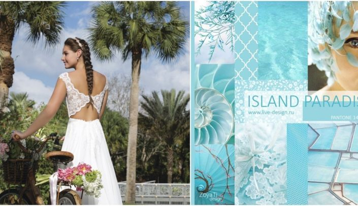 grafika promocyjna Island Paradise