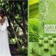 Grafika promocyjna greenery